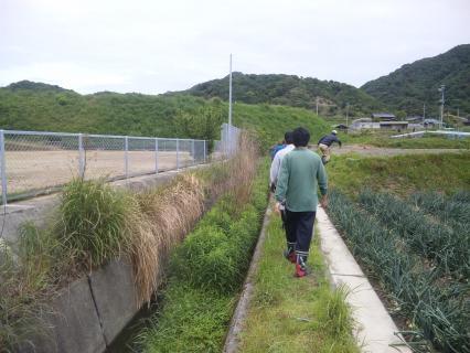 水路点検2
