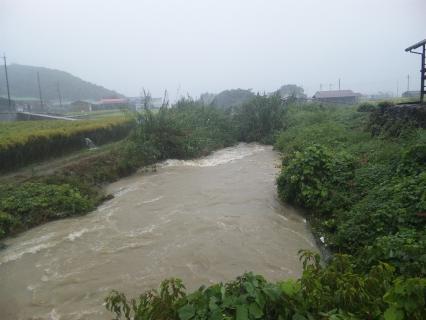 台風で増水の牛内川