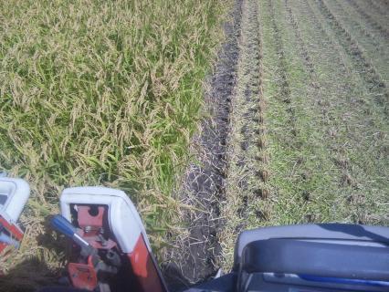 稲刈り自動運転