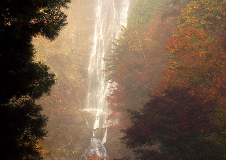 唐沢の滝02