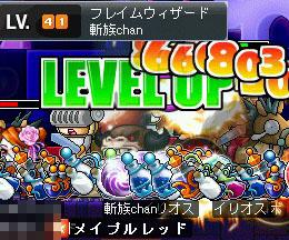 シグナス40→41