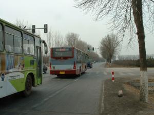 バス最強伝説