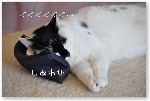 goma cuscino