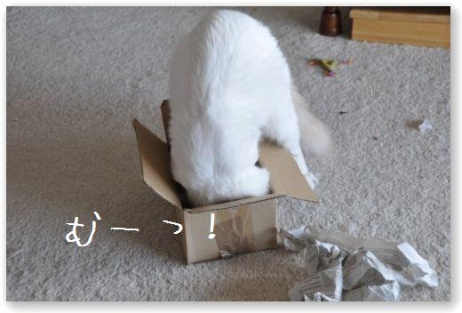 zukko box2