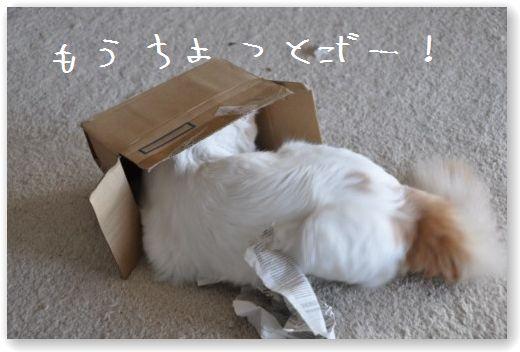 zukko box3