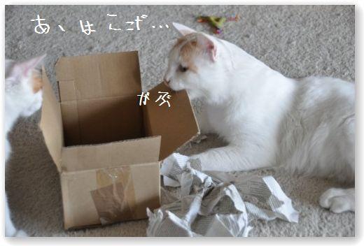 zukko box1