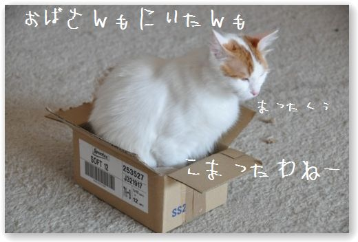 pippi box1