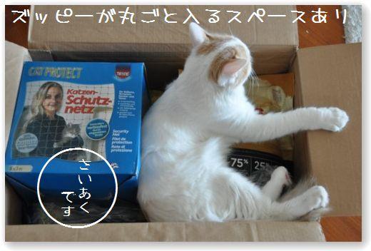 scatola zooplus