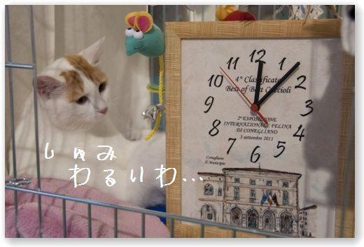 14 (コピー)