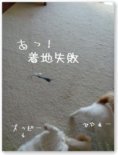 jumping8.jpg