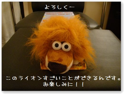lion-.jpg