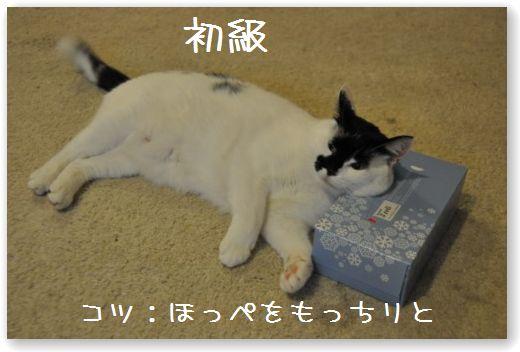 makura1_20091024032807.jpg