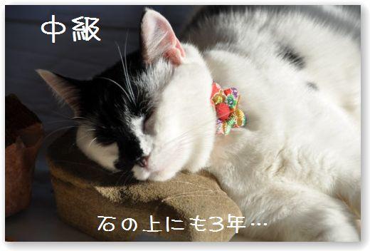 makura2_20091024032807.jpg