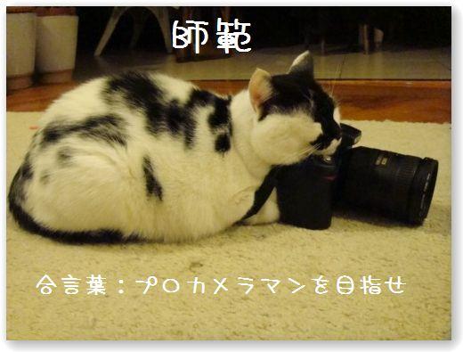 makura3_20091024032806.jpg