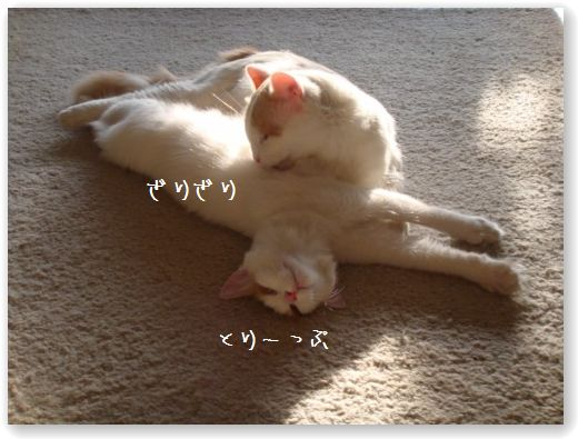 massaggio2.jpg