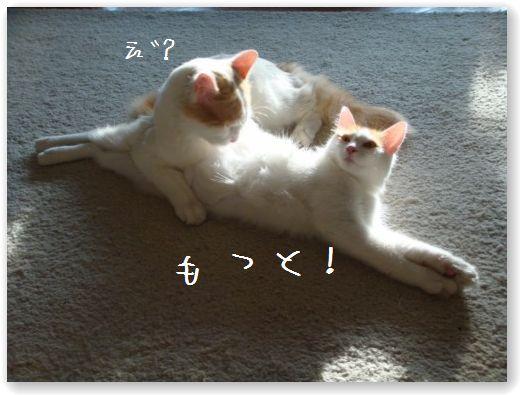 massaggio4.jpg