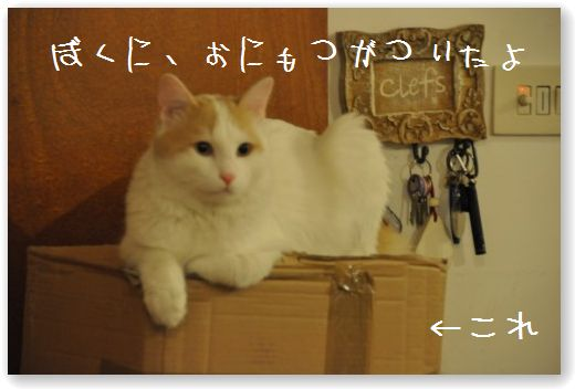 zoo1_20091004020236.jpg