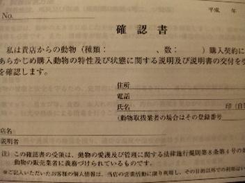 091201_073950_ed.jpg