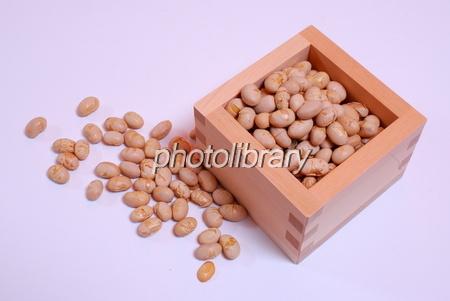 698096 大豆
