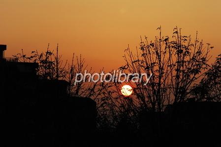 650933 秋の夕日