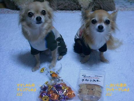 おいら達のクッキー