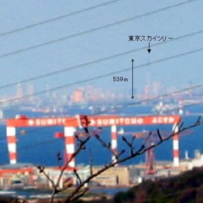 横須賀・塚山公園から東京スカイツリー方面を望む(拡大、2011年1月1日)
