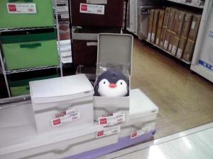 箱入りクッションさん(2011.9.27)
