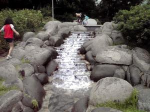 うつぼ公園 バラ園(その2)