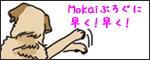 MokaiBlogThumbnail