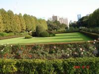 フランス式整形庭園バラ花壇