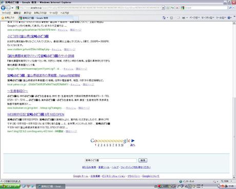 Google検索 「宮崎ぶどう園」