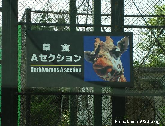 姫路セントラルパーク_2