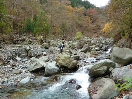 hayatootaki_path9.jpg