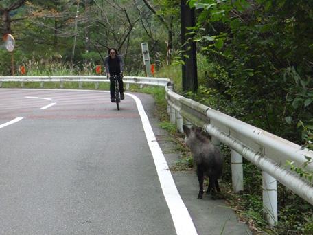shimokitayamamura01.jpg
