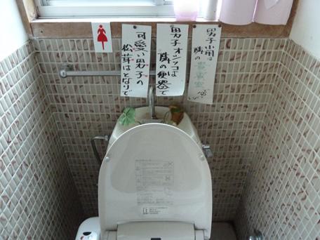 togenochaya01.jpg