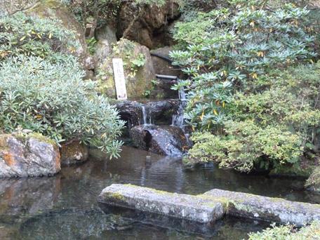 togenochaya02.jpg