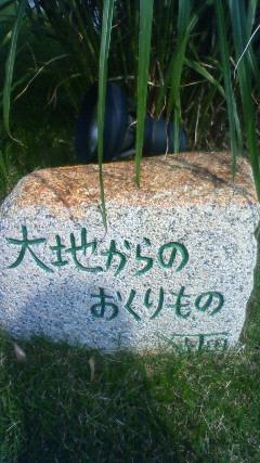 201106031531000.jpg