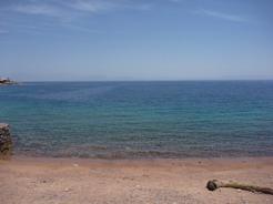 1jun2010 ダハブの海