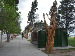 7nov2010 海岸沿いにある枯れ木を使ったオブジェ