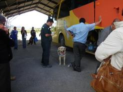 10nov2010 チリ側国境の荷物検査