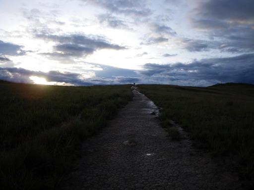 14dec2010 リオ・テックへ続く道