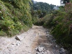 26feb2011 こんな感じの林道が山頂まで続く