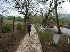 22mar2011 コパン遺跡へ続く遊歩道