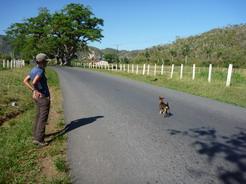 10apr2011 のんびりした田舎道