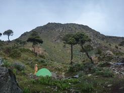 7jun2011 テン場から見る山頂部