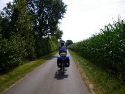 12jul2011 とうもろこし畑の脇の自転車道