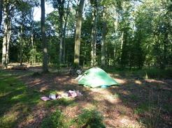25jul2011 この日は力尽きて森の中に幕営