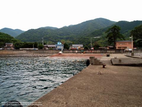西伊豆 井田の埠頭