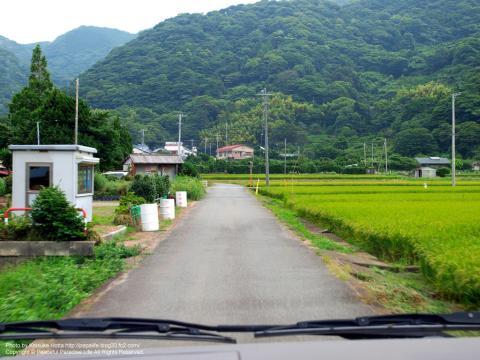 西伊豆 井田の田園風景