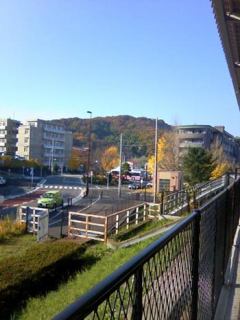 20101128_01.jpg